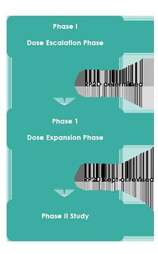 Phase I Oncology Escalation IMG1