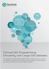 SAS_Programming_with_Large_SAS_Datasets_-_Website.png