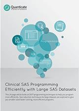 SAS_Programming_with_Large_SAS_Datasets_-_Website.png